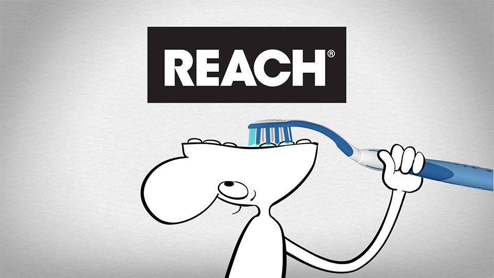 """Reach Complete Care """"Flip-Top Head"""""""